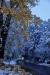 winter in Almaty
